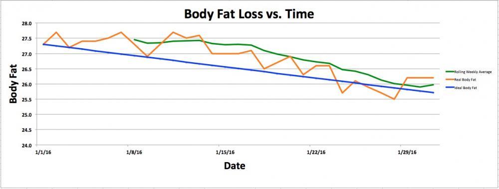 January 2016 Body Fat Loss.jpg
