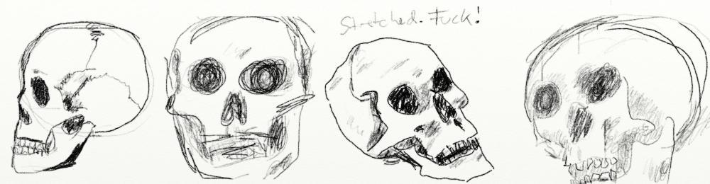 Skull.thumb.jpg.0dae5605e8c9d19ef490a7f3